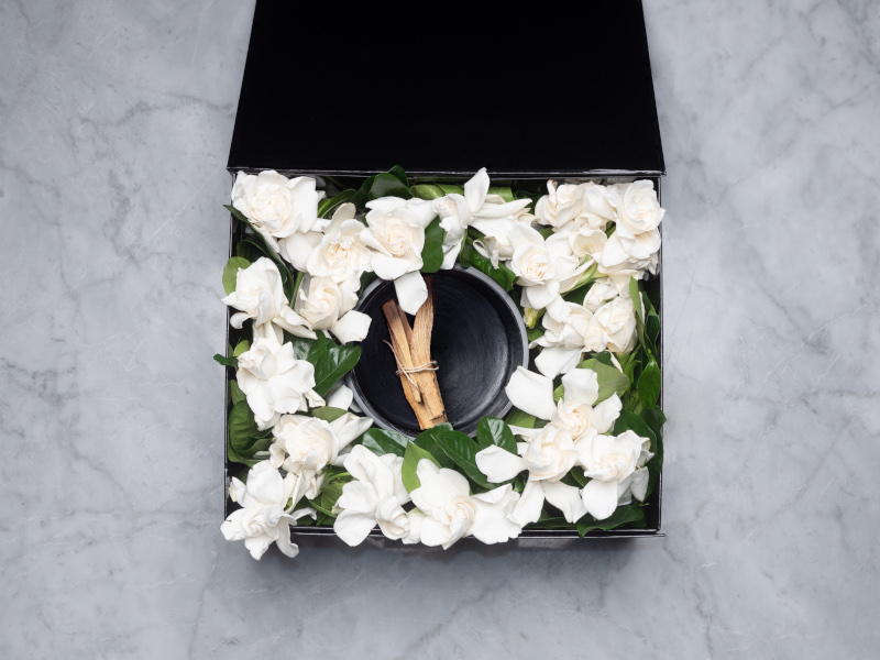 Candle Vine and Bloom Gardenia box