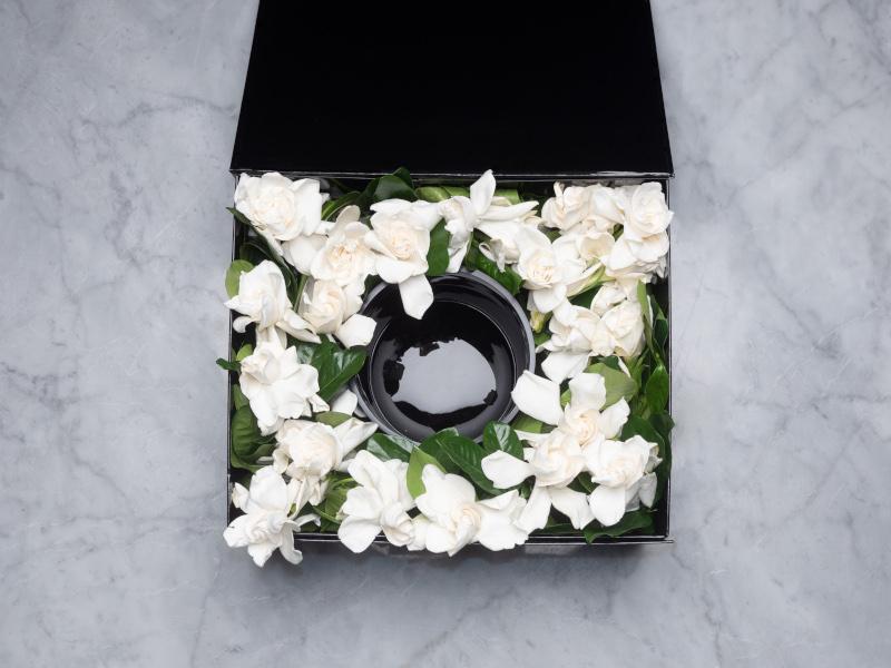 Vine and Bloom Gardenia box