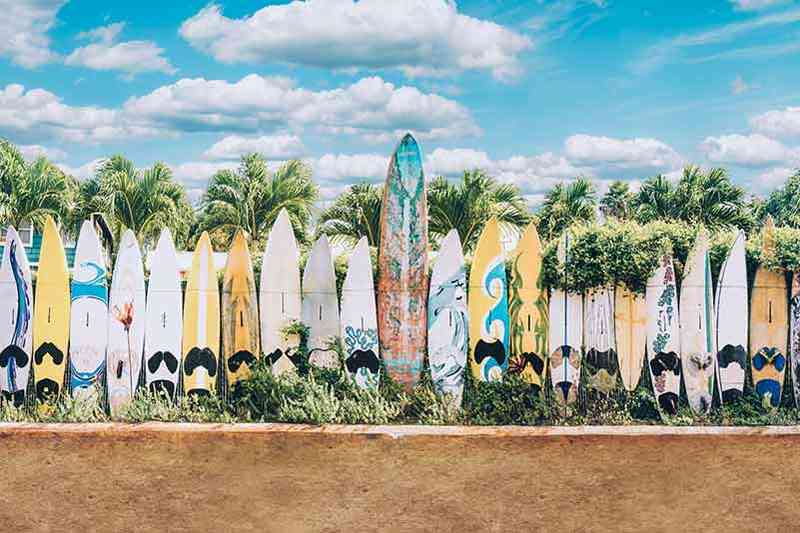 Hawaii Surf Boards