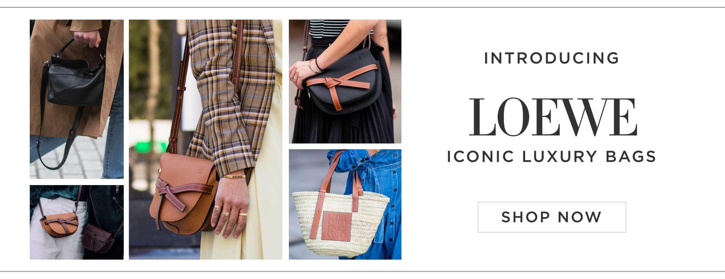 Introducing Loewe