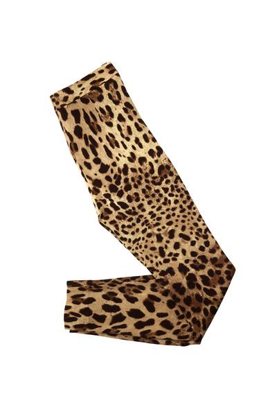 Dolce & Gabbana - Leopard Cady Leggings